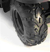 ARTV4202 Rear ATV Tire and Rim